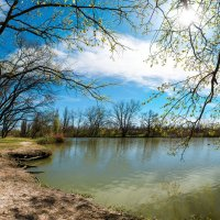 Парк « Солнечный остров « Краснодар :: Алексей Сазонов