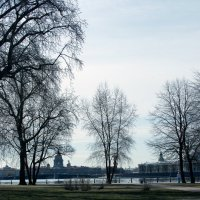 Городской пейзаж с деревьями :: Valerii Ivanov
