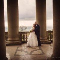 Свадебное фото :: Виктория Joy