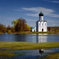 Церковь Покрова на Нерли :: Татьяна Тарасова