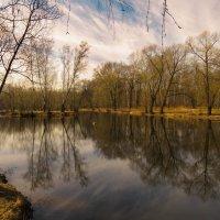 Радужный пруд в Кусково :: Наталья Лакомова