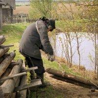 Возвращение из леса :: Валерий Талашов
