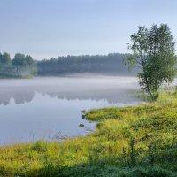 Утренняя свежесть :: Валерий Талашов