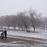 Чертов зауральский  апрель (горячий  снимок) :: A. SMIRNOV