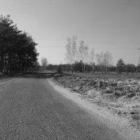 Путь обратно :: Василиса Вишневская