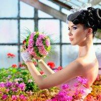 Цветочный сезон :: Илья Антюфеев