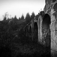 Дождь, туман, тишина... :: Алексей Плахотин