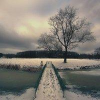 Lonelyness :: Ромус Рамстрем