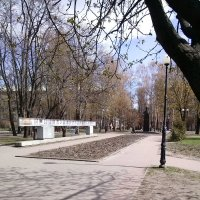 Аллея парка :: Ольга Дувалкина