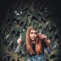 Алиса в стране чудес :: Виктория Андреева