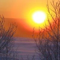 утро морозное :: Александр