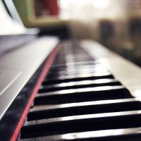 дорога к миру музыки :: Алёна Колесова