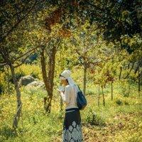 Молитва в лесу :: Сергей Савич