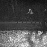 Предзакатная велопрогулка)) :: Тарас Золотько