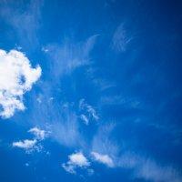 Апрельское небо :: Светлана Шаповалова