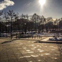 Солнечный денёк :: Сергей Донской