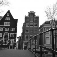 амстердам :: venera