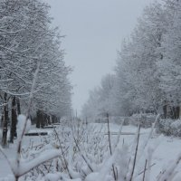 Весенние пейзажи :: Артем Калашников