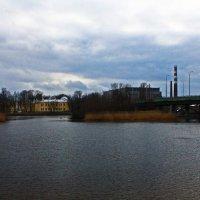 Река Малая Невка. :: Александр Лейкум