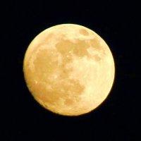 Луна... :: Владимир  Зотов
