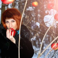 Зимние яблоки :: Наталья Первова