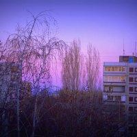 Вечер... :: Евгения Гущина