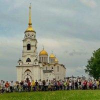 Даёшь городу велодорожки! :: Владимир Шошин
