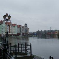 Калининград :: Ольга Сорокина