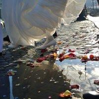 Осень, свадьба.. :: Марина Солодова