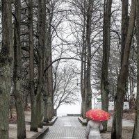 женщина под красным зонтом :: Oleg Mechetin