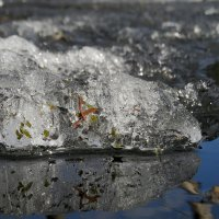 Последний лёд :: Юрий Цыплятников