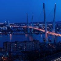 Мост через бухту Золотой Рог :: Олег Окселенко