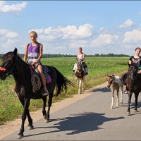 Три грации на грациозных лошадках. :: Роланд Дубровский