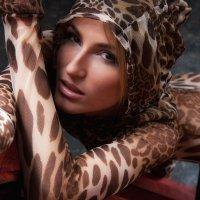 Женщина кошка :: Владимир Зеленков