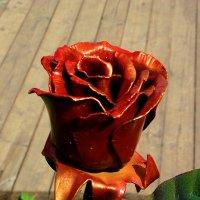Стальная роза :: Mavr -