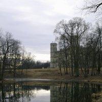Гатчинский парк. :: Юка Волнистая