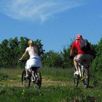 Мы будем долго  гнать велосипед! :: Владимир Шошин