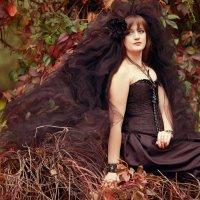 Времена года - Осень :: Дина Белозерова
