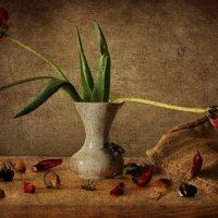 про цветочки и букашек, которые умерли... :: kram