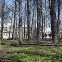 Апрель :: Владимир Белов