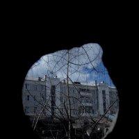 Дырка в заборе... :: Павел Зюзин