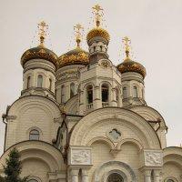 праздник Пасхи :: Светлана Попова