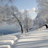 зимнее озеро :: Андрей Немерцалов