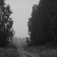 Дорога :: Agniya Markelova