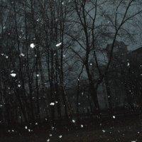 снежок :: машенька алексеева