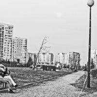 Поцелуй :: Алексей Окунеев