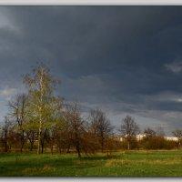Хмурое небо :: Татьяна Кретова