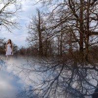 На берегу неба... :: Оксана Савельева