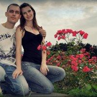 в долине роз :: Ник Карелин