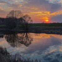 В лучах заходящего солнца. :: Igor Yakovlev